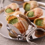 escargot  pinces